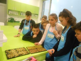 Proiectul Geosera – activități fascinante pentru elevi cu ajutorul Fondului Științescu