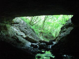La doi pași de Oradea: peștera de la Tășad