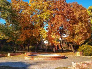 3 locații potrivite pentru fotografii de toamnă perfecte în Oradea
